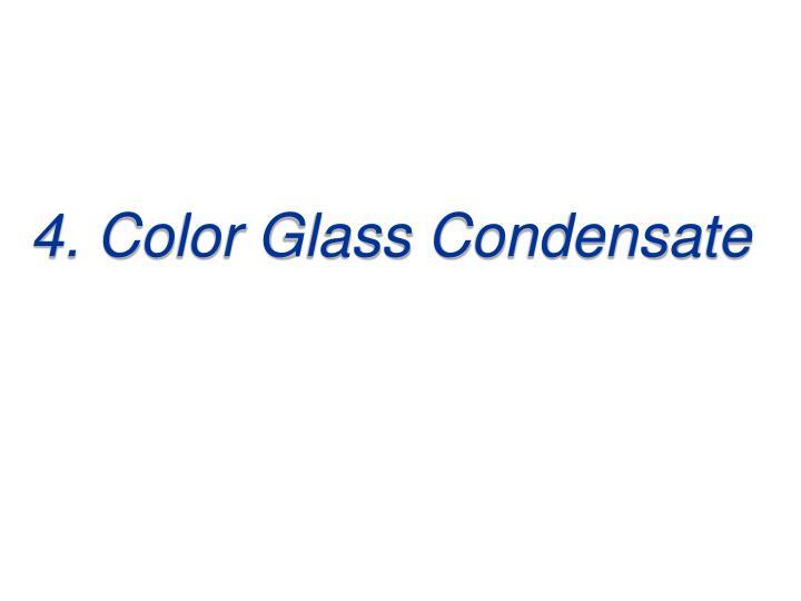 4. Color Glass Condensate