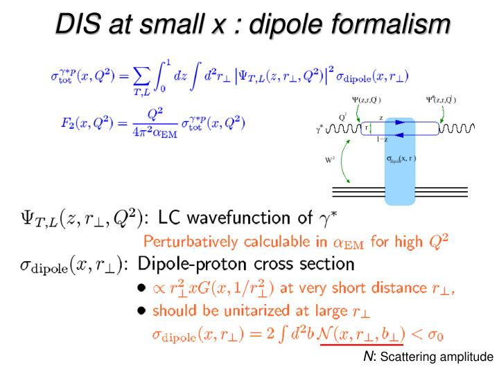 DIS at small x : dipole formalism
