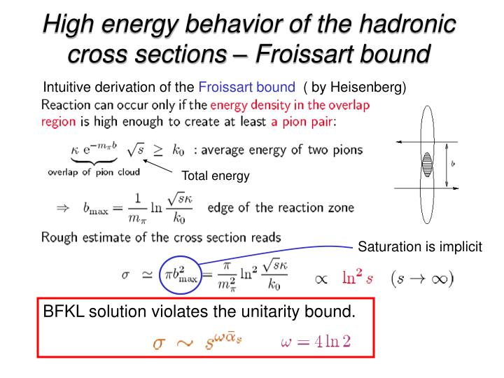 High energy behavior of the hadronic cross sections – Froissart bound