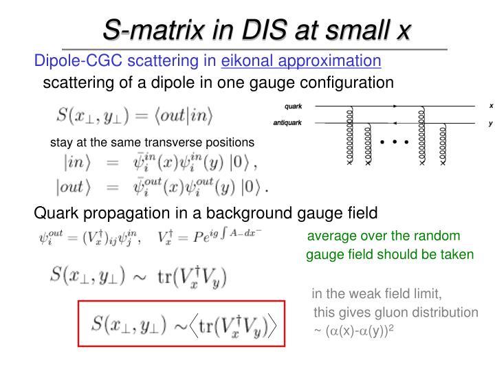 S-matrix in DIS at small x