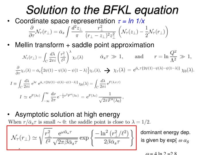 Solution to the BFKL equation