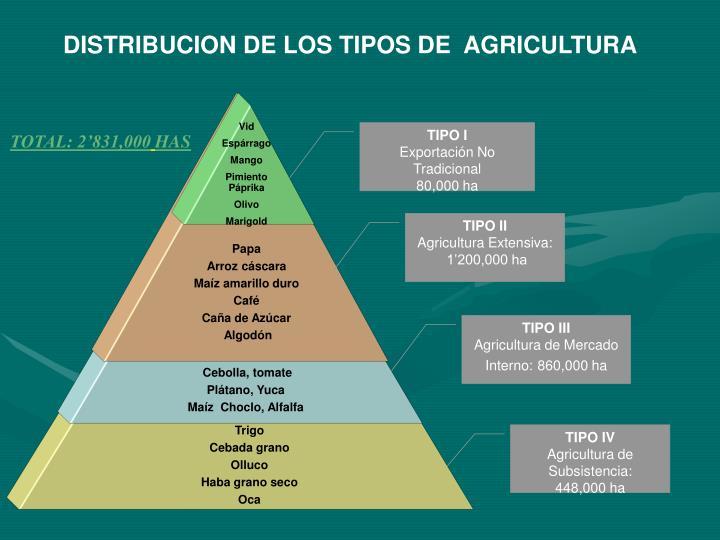 DISTRIBUCION DE LOS TIPOS DE  AGRICULTURA