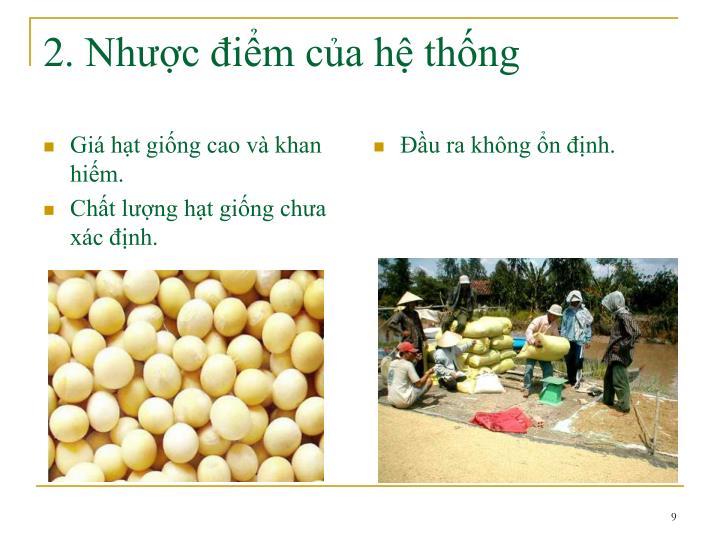 Giá hạt giống cao và khan hiếm.