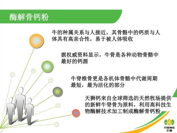 酶解骨钙粉