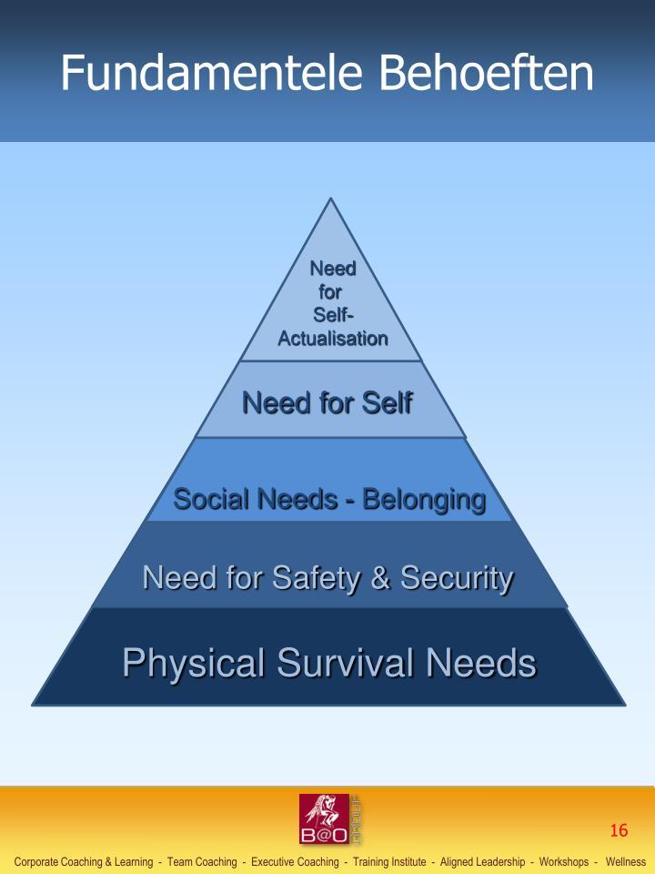 Fundamentele Behoeften
