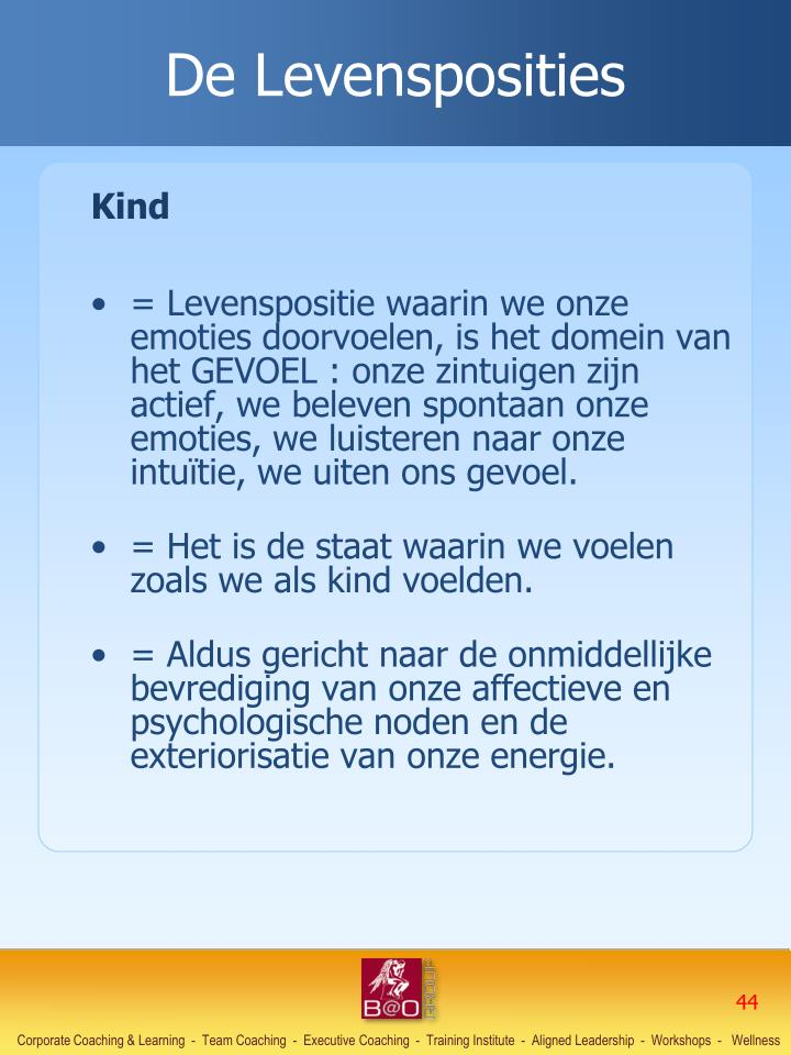 De Levensposities