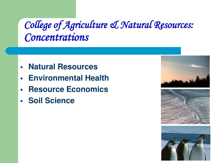 College of Agriculture & Natural Resources:
