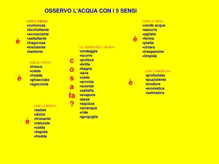 OSSERVO L'ACQUA CON I 5 SENSI