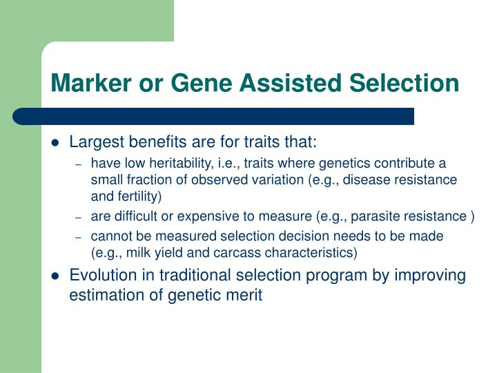 Marker or Gene Assisted Selection