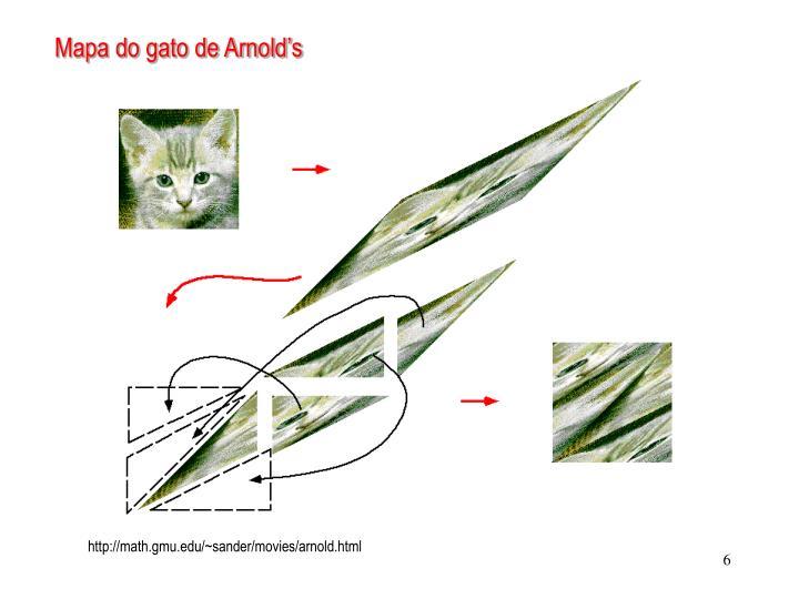 Mapa do gato de Arnold's