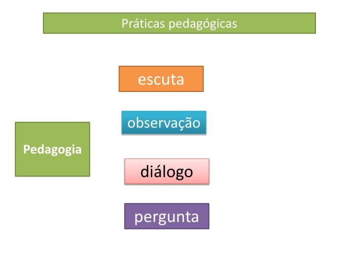 Prticas pedaggicas