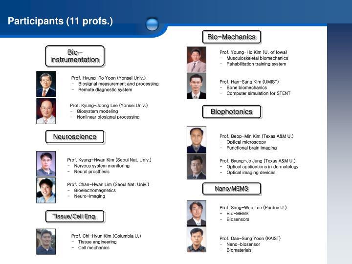 Participants (11 profs.)