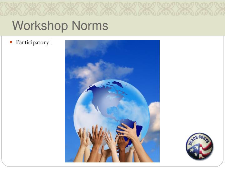 Workshop Norms