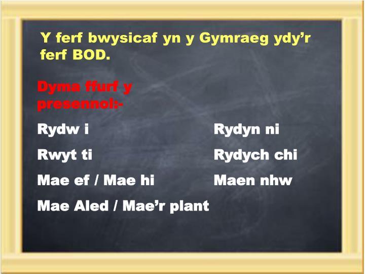 Y ferf bwysicaf yn y Gymraeg ydy'r ferf BOD.