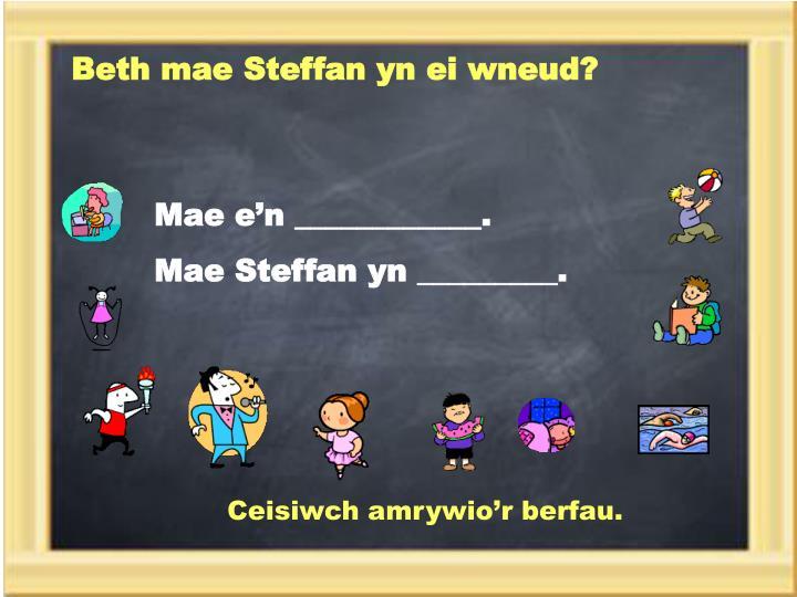 Beth mae Steffan yn ei wneud?