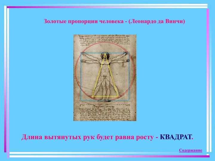 Золотые пропорции человека - (Леонардо да Винчи)