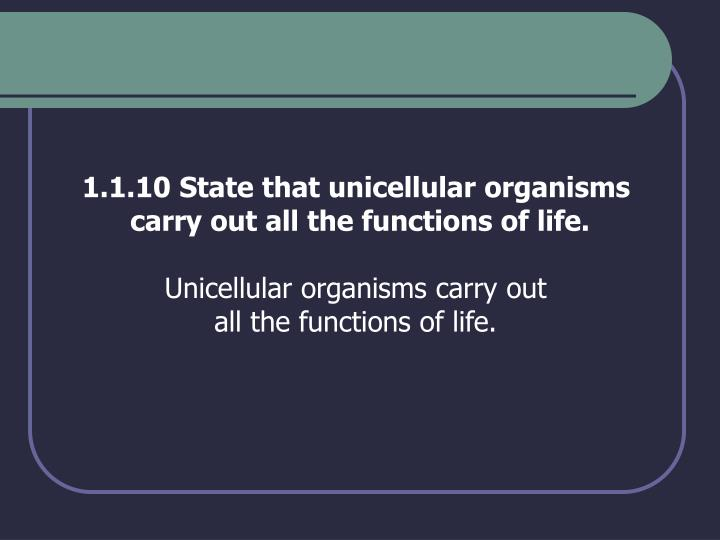 1.1.10 State that unicellular organisms