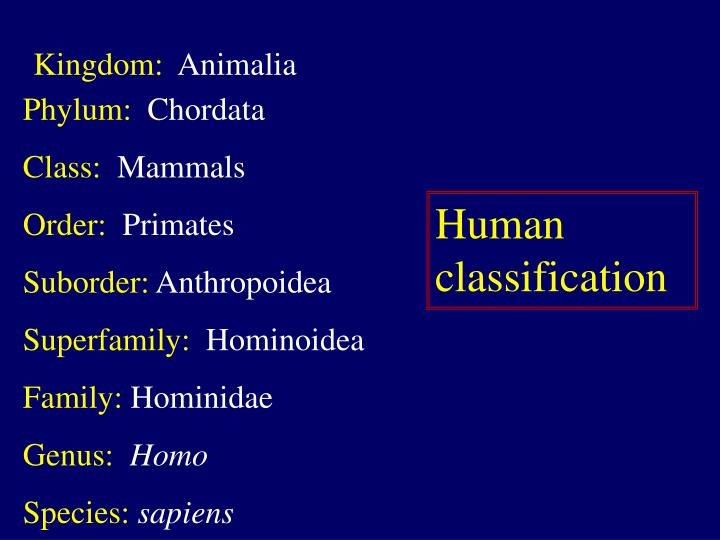 an overview of hominid species and human evolution The scientific study of human evolution encompasses the development of the genus homo, but usually involves studying other hominids and hominines as well, such as australopithecus modern humans are defined as the homo sapiens species, of which the only extant subspecies - our own - is known as homo sapiens sapiens.