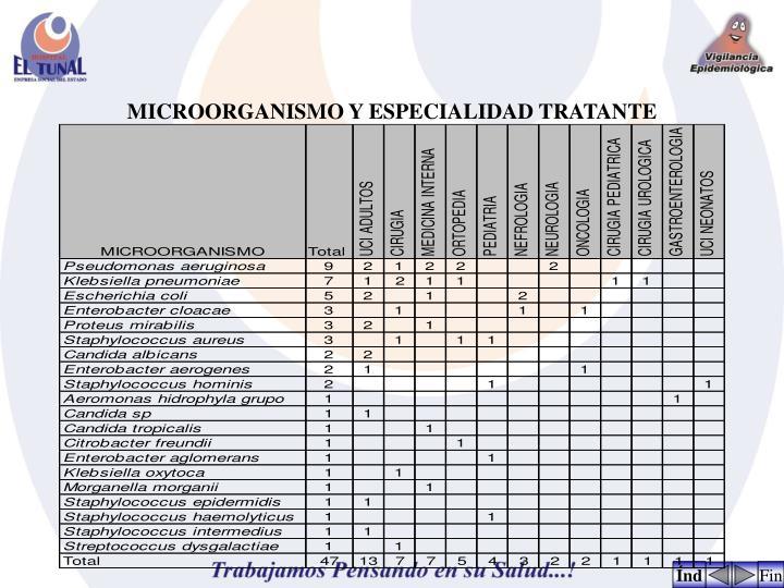 MICROORGANISMO Y