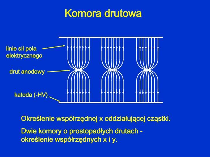 Komora drutowa