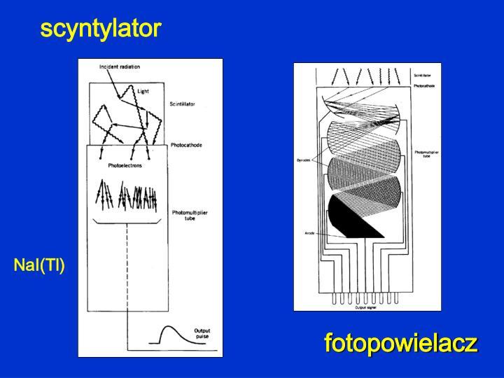 scyntylator