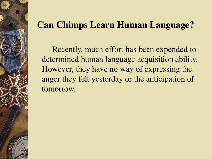 Can Chimps Learn Human Language?