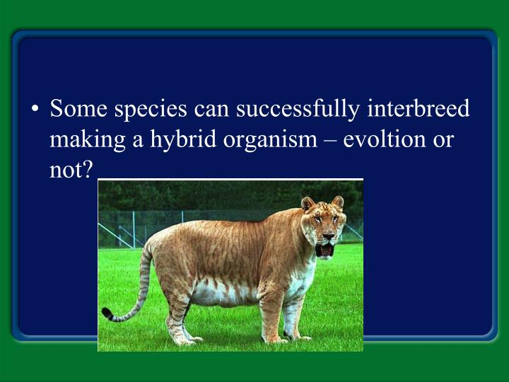 Some species can successfully interbreed making a hybrid organism – evoltion or not?