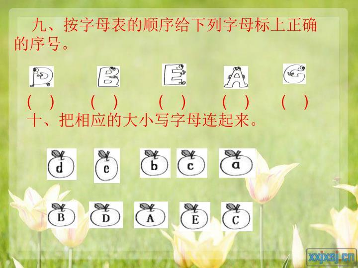 九、按字母表的顺序给下列字母标上正确的序号。