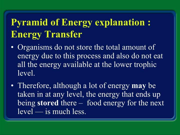 Pyramid of Energy explanation : Energy Transfer