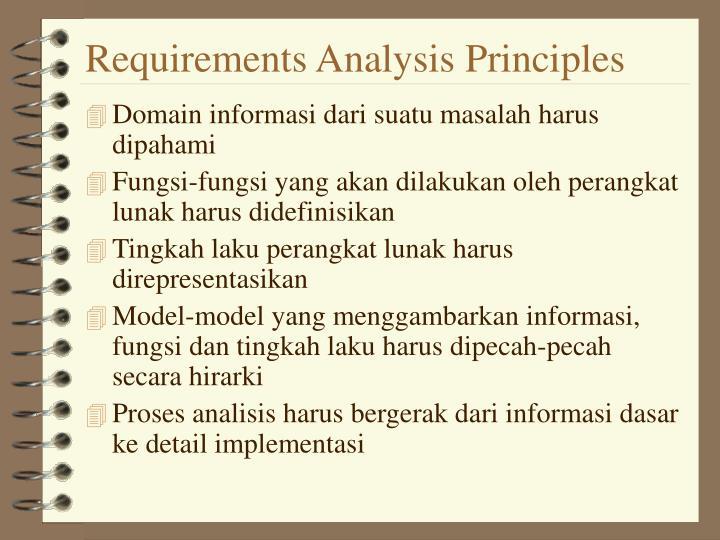 Requirements Analysis Principles