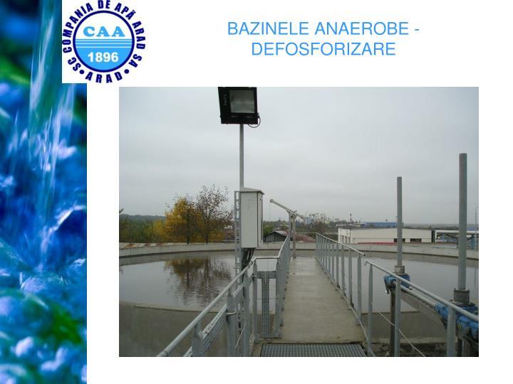 BAZINELE ANAEROBE - DEFOSFORIZARE