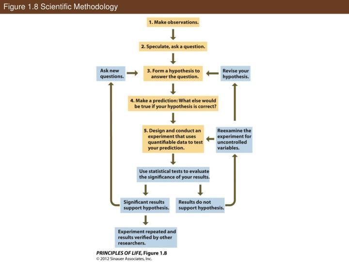 Figure 1.8 Scientific Methodology