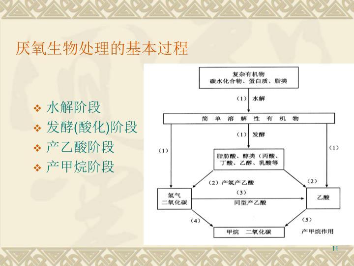 厌氧生物处理的基本过程