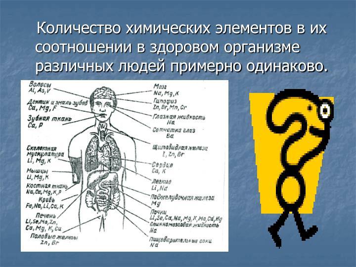 Количество химических элементов в их соотношении в здоровом организме различных людей примерно одинаково.