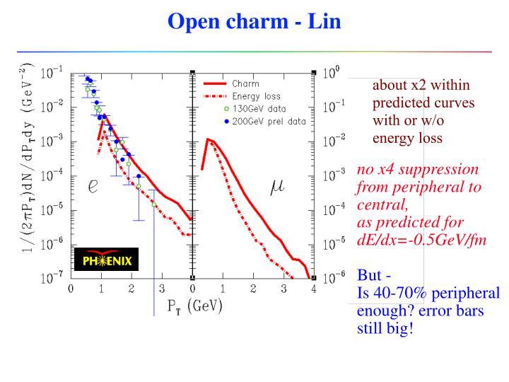 Open charm - Lin