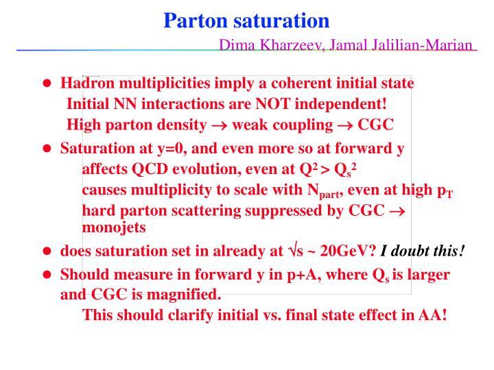 Parton saturation