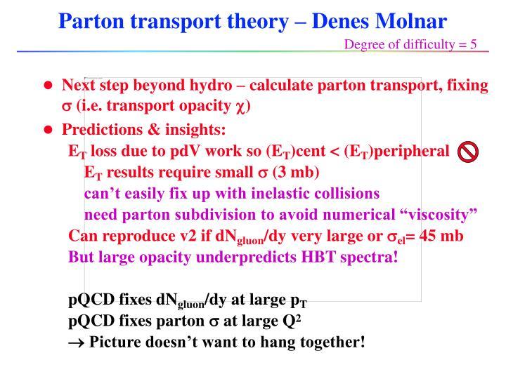 Parton transport theory – Denes Molnar