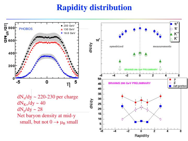 Rapidity distribution