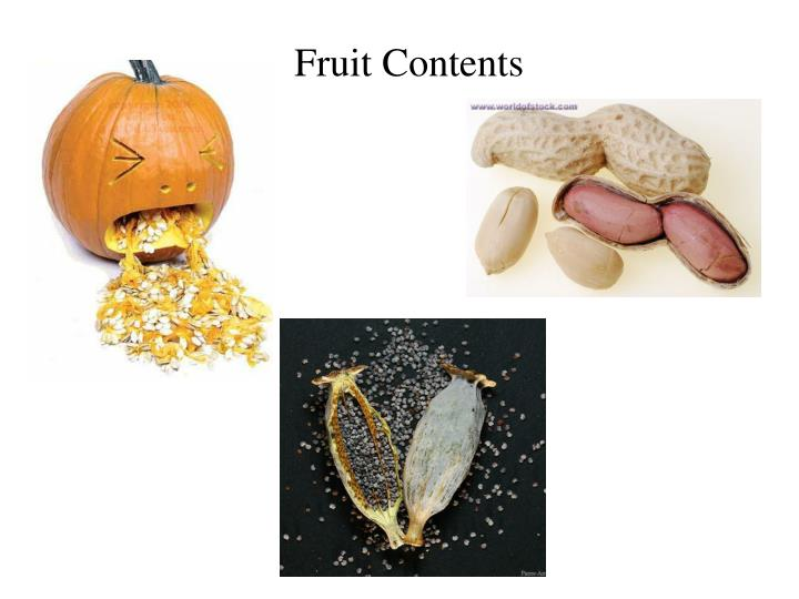Fruit Contents