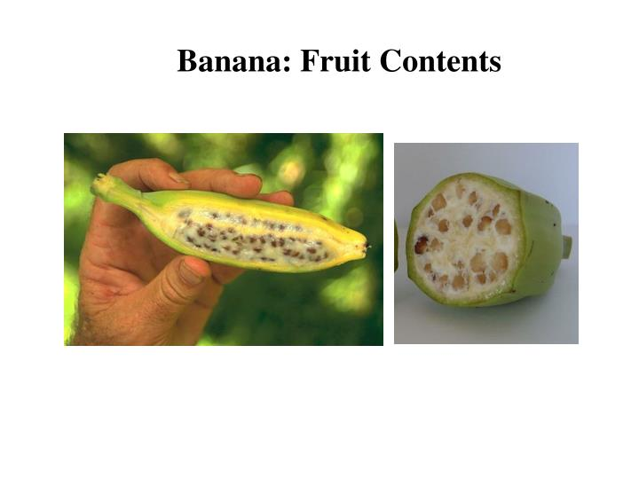 Banana: Fruit Contents