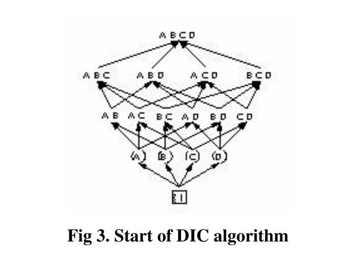 Fig 3. Start of DIC algorithm
