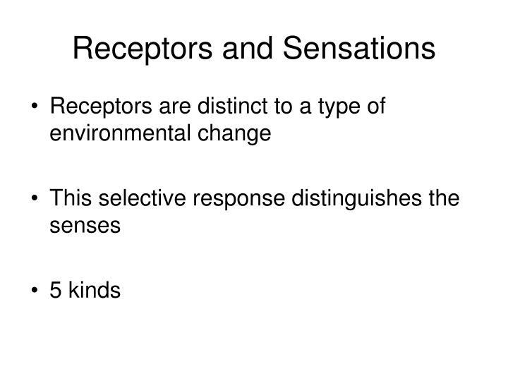 Receptors and Sensations