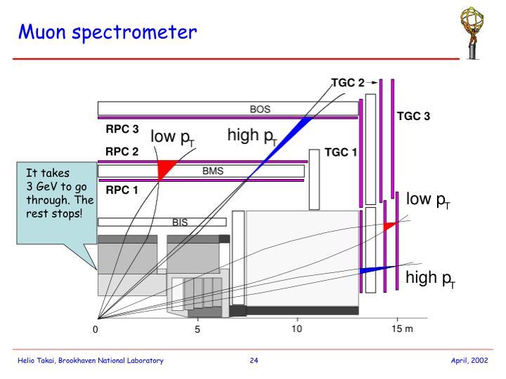 Muon spectrometer