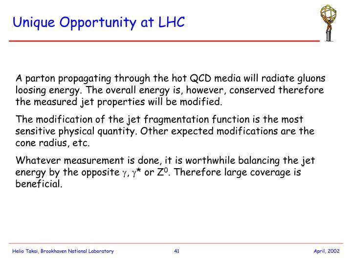 Unique Opportunity at LHC