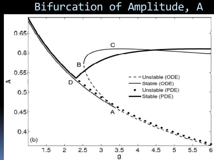 Bifurcation of Amplitude, A