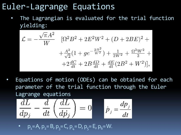 Euler-Lagrange Equations