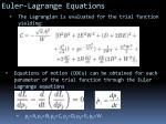 euler lagrange equations
