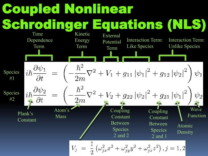 Coupled Nonlinear Schrodinger Equations (NLS)