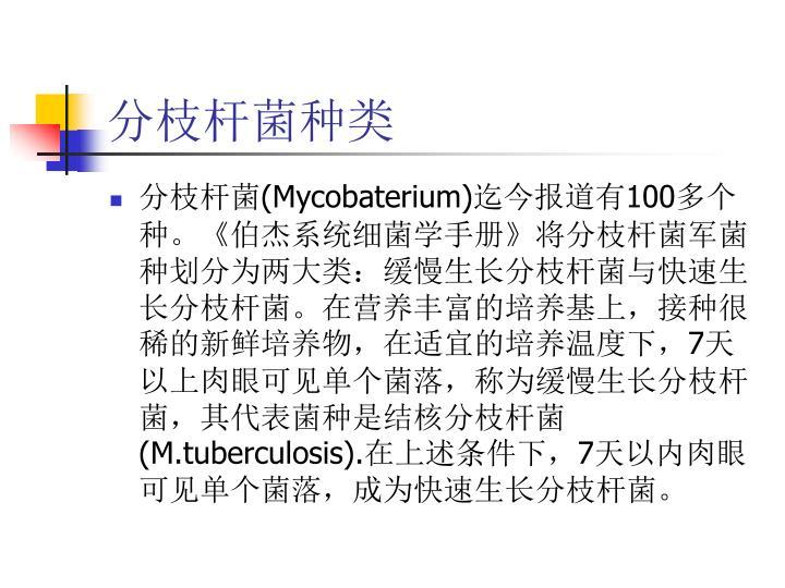 分枝杆菌种类