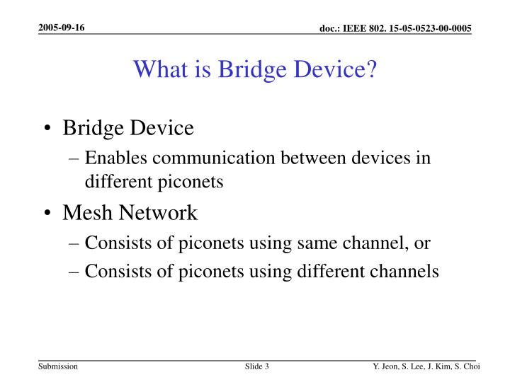 What is bridge device